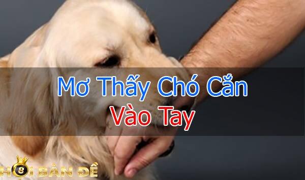 Mo-thay-cho-danh-so-may