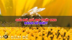 Giải mã giấ mơ thấy ong đánh số mấy?