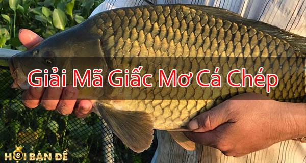 Mo-Thay-Ca-Chep-Danh-Con-Gi