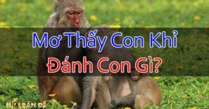 Nam-Mo-Thay-Con-Khi-Danh-Con-Gi-Chiem-Bao-Thay-Khi