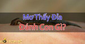 Nam-Mo-Thay-Dia-Mo-Thay-Dia-Can-Danh-Con-Gi