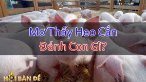 Nam-Mo-Thay-Heo-Can-Danh-Con-Gi-Mo-Thay-Lon-Can