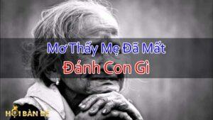 Nam-Mo-Thay-Me-Da-Mat-Danh-Con-Gi