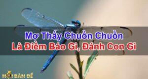 Mo-Thay-Con-Chuon-Chuon-Danh-Con-Gi-Diem-Bao-Tot-Hay-Xau