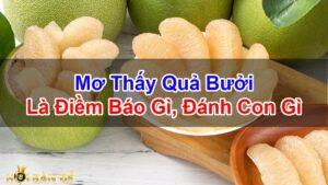 Nam-Mo-Thay-Qua-Buoi-Danh-Con-Gi-Diem-Bao-Tot-Hay-Xau